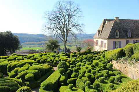 Lovely garden in the Dordogne