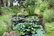 jardins-tranquille-5