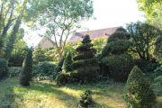 jardin-de-buis1