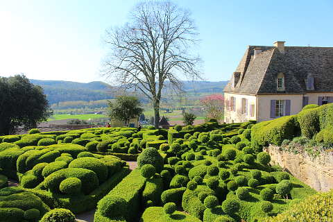 Beautiful swirling topiary of the Marqueyssac gardens