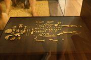 le-moustier-skeleton